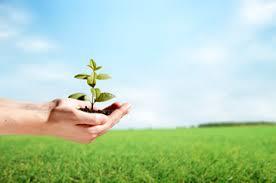 tecnologia amiga do ambiente