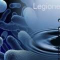 Legionella 1